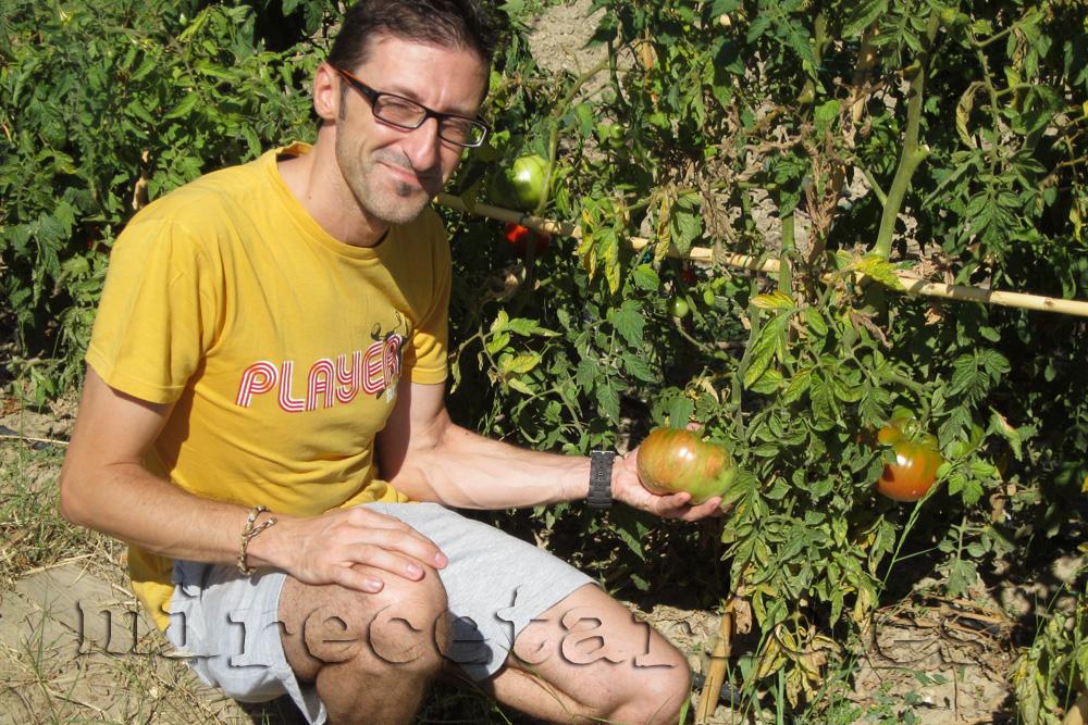 Aquí un tomate, aquí yo