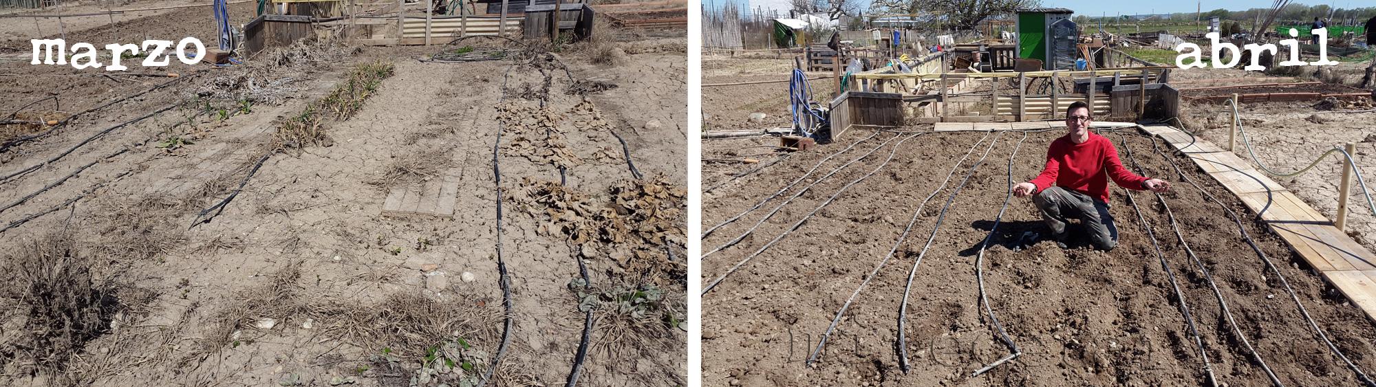 El antes y el después del huerto